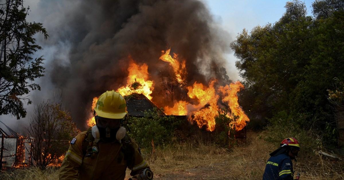 Φωτιά στην Αχαΐα: 300 πυροσβέστες στη σκληρή μάχη με τις φλόγες – Κάηκαν…