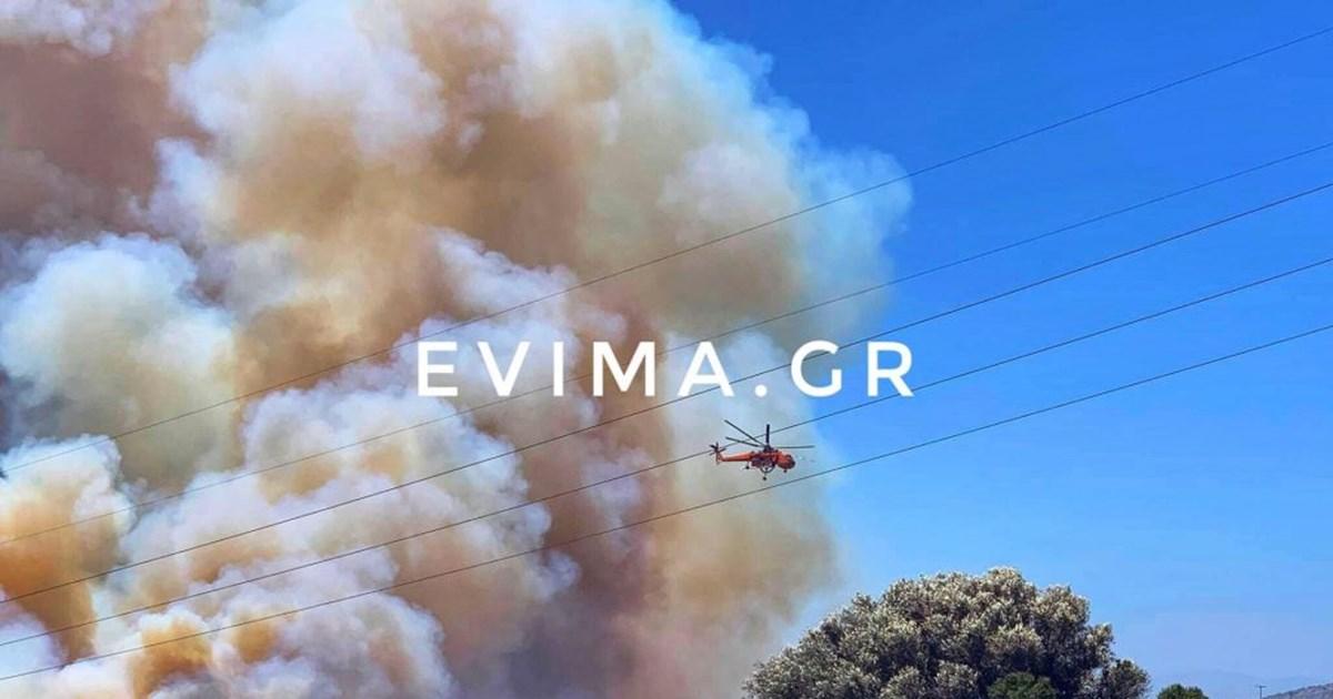 Συναγερμός στην Εύβοια: Ξέσπασαν δύο φωτιές στα Πολιτικά [εικόνες]
